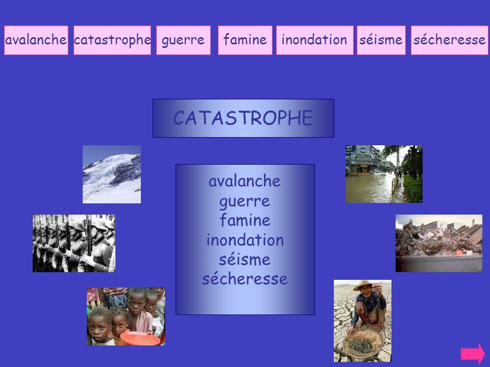 CATASTROPHE avalanche guerre famine inondation séisme sécheresse