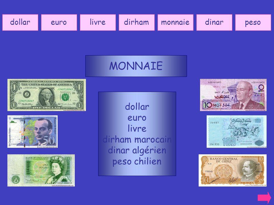 MONNAIE dollar euro livre dirham marocain dinar algérien peso chilien