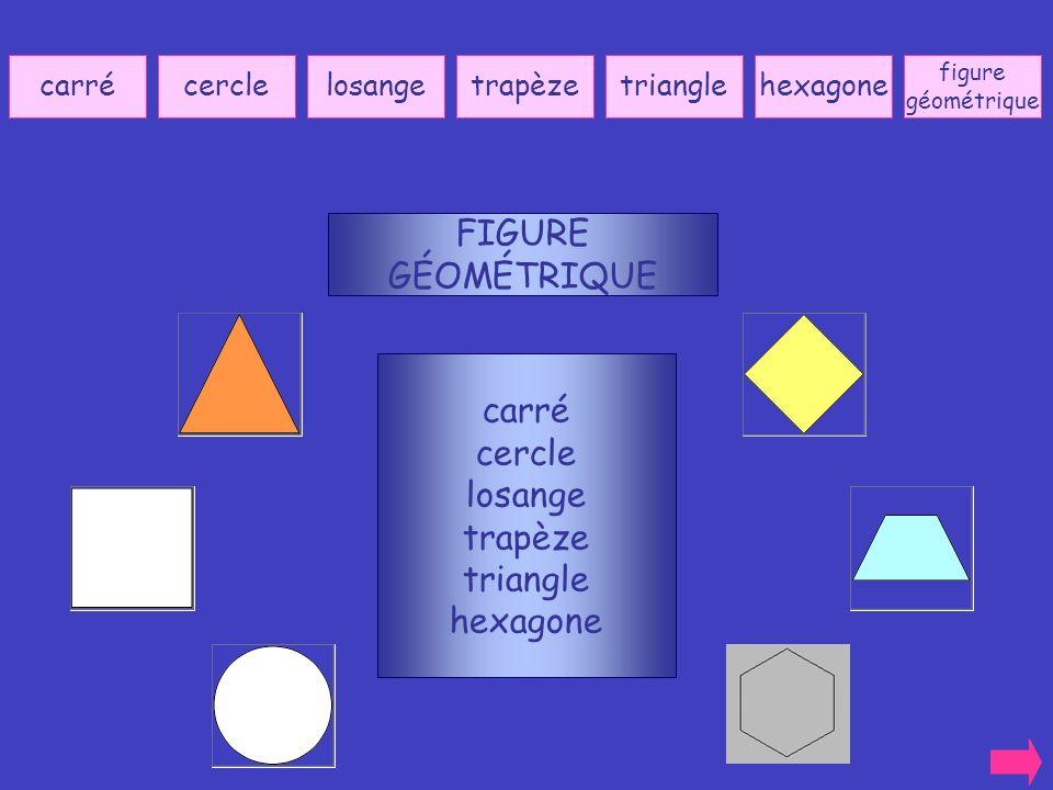 FIGURE GÉOMÉTRIQUE carré cercle losange trapèze triangle hexagone