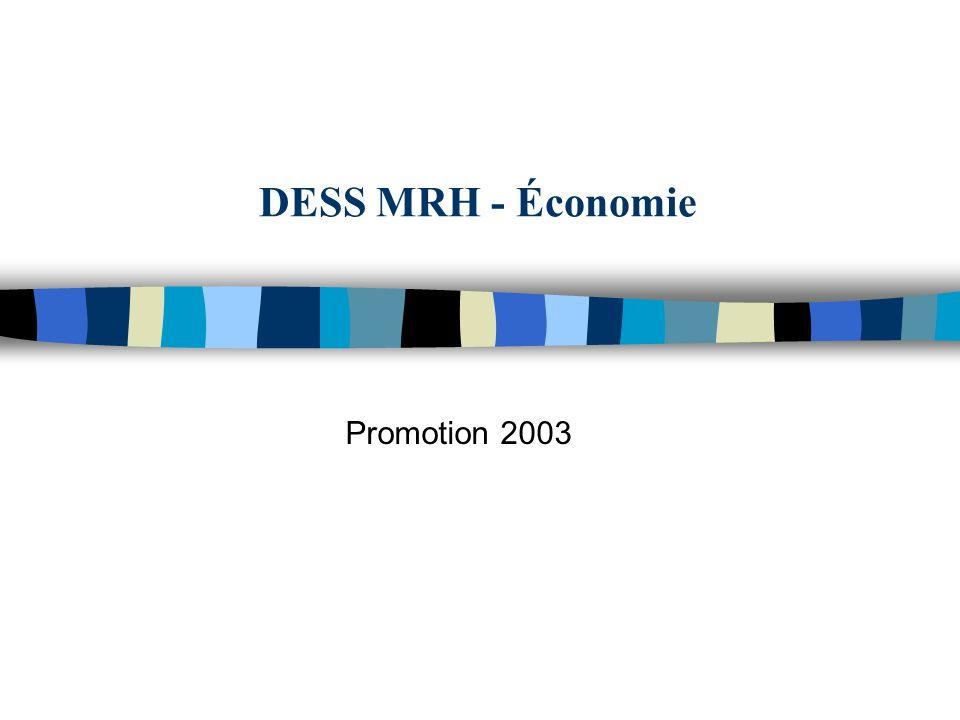 DESS MRH - Économie Promotion 2003