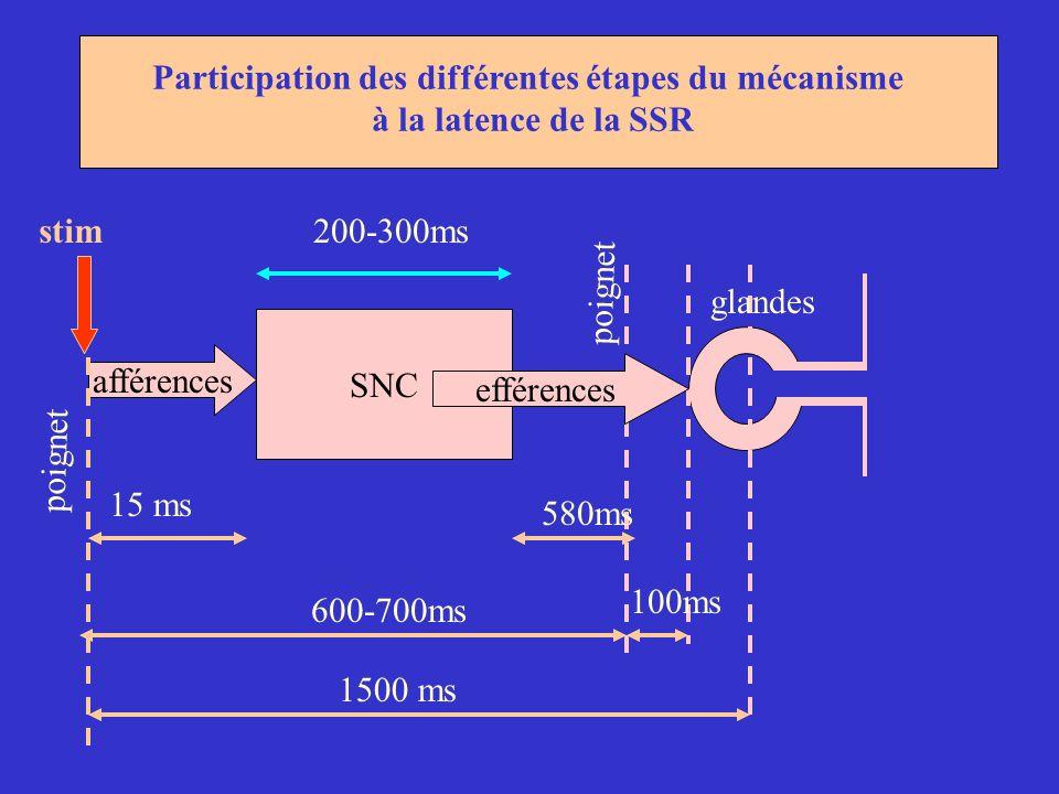 Participation des différentes étapes du mécanisme