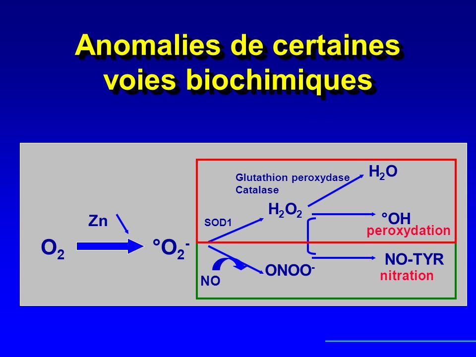 Anomalies de certaines voies biochimiques