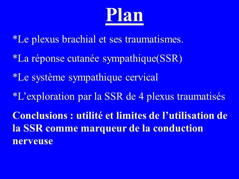 Plan *Le plexus brachial et ses traumatismes.