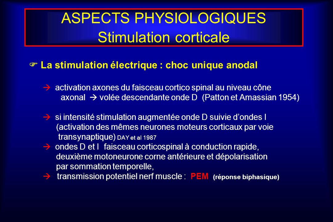 ASPECTS PHYSIOLOGIQUES Stimulation corticale