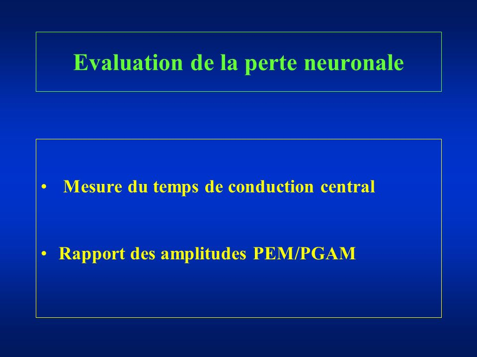 Evaluation de la perte neuronale