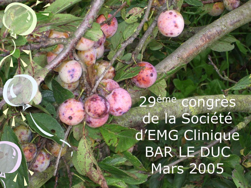 29éme congrès de la Société d'EMG Clinique BAR LE DUC Mars 2005