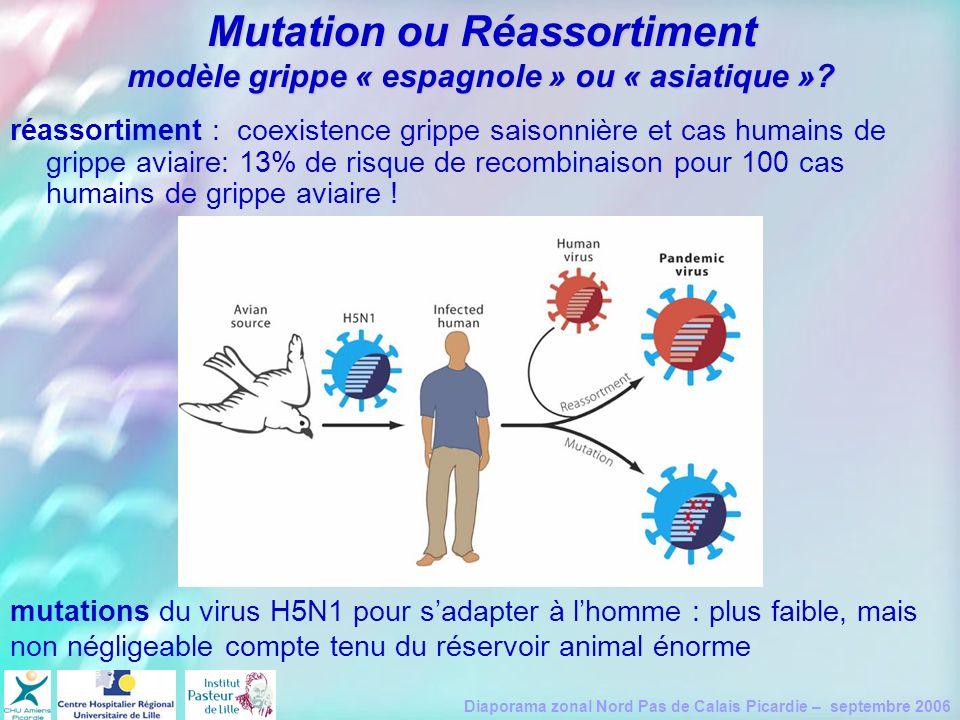 Mutation ou Réassortiment modèle grippe « espagnole » ou « asiatique »
