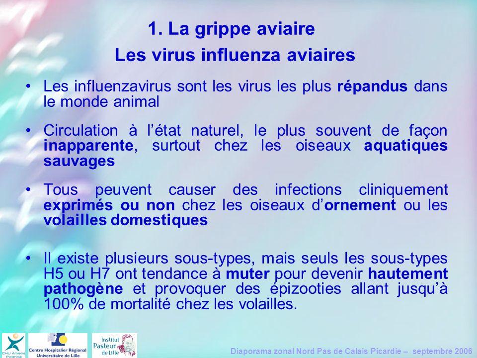 Les virus influenza aviaires