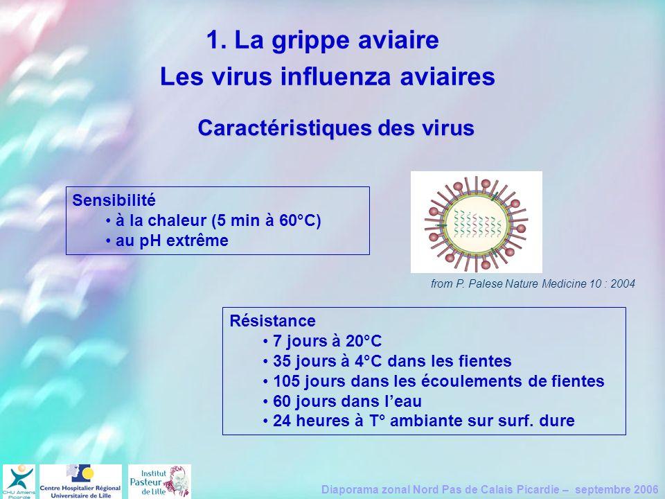 Les virus influenza aviaires Caractéristiques des virus