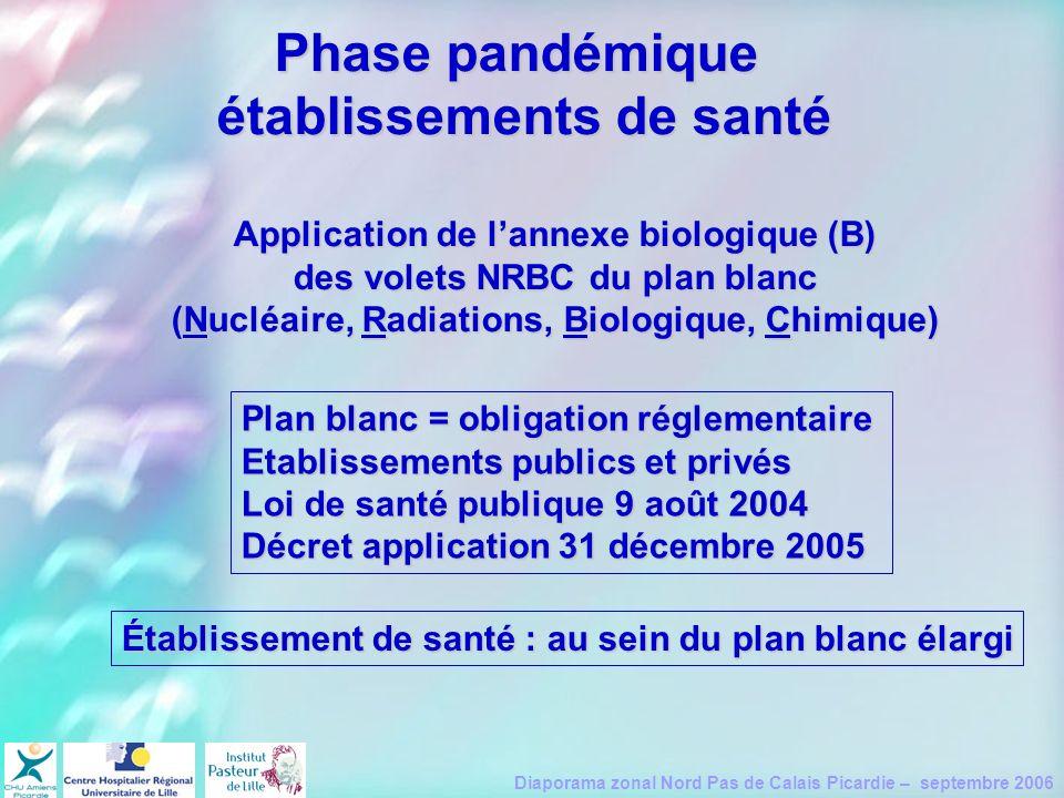 Phase pandémique établissements de santé