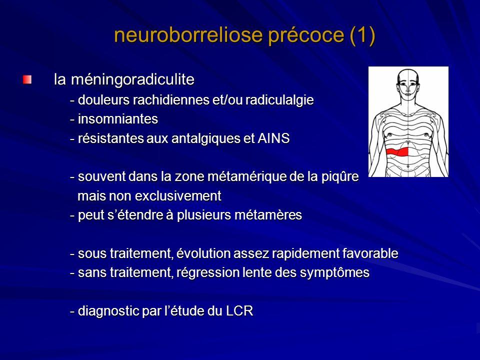 neuroborreliose précoce (1)