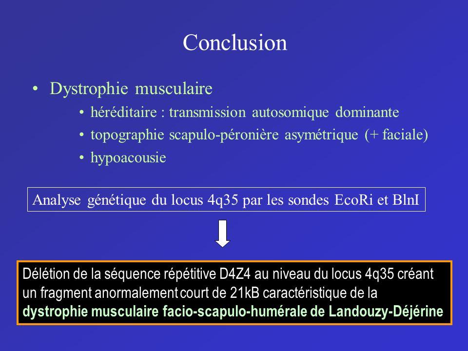 Conclusion Dystrophie musculaire