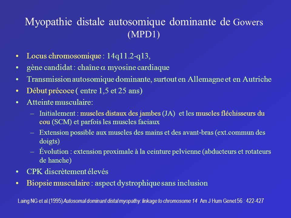 Myopathie distale autosomique dominante de Gowers (MPD1)