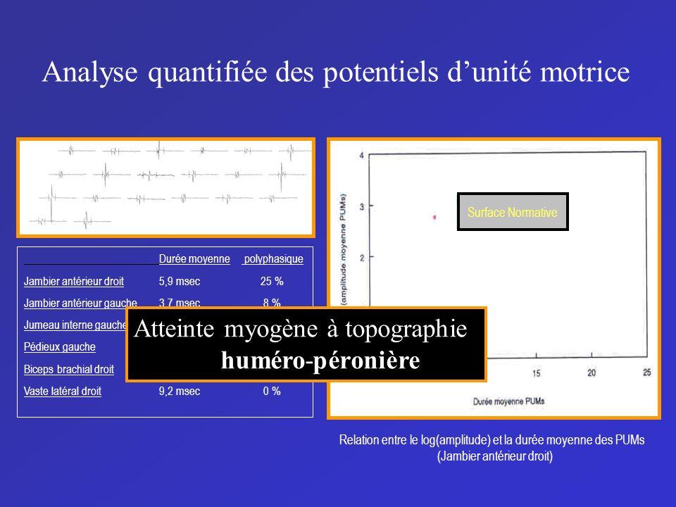Analyse quantifiée des potentiels d'unité motrice
