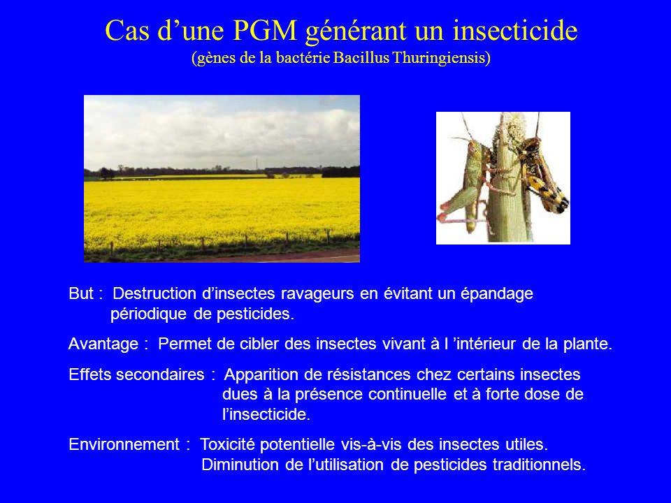 Cas d'une PGM générant un insecticide (gènes de la bactérie Bacillus Thuringiensis)
