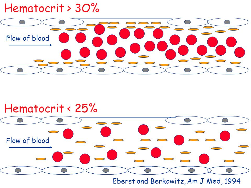 Hematocrit > 3O% Hematocrit < 25% Flow of blood Flow of blood