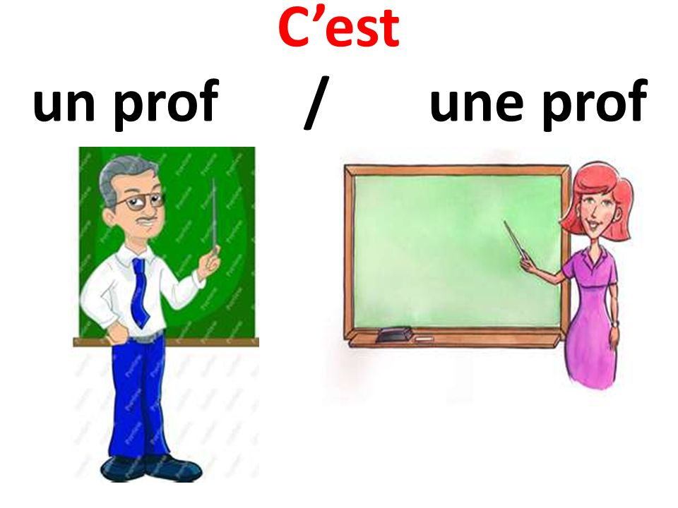 C'est un prof / une prof