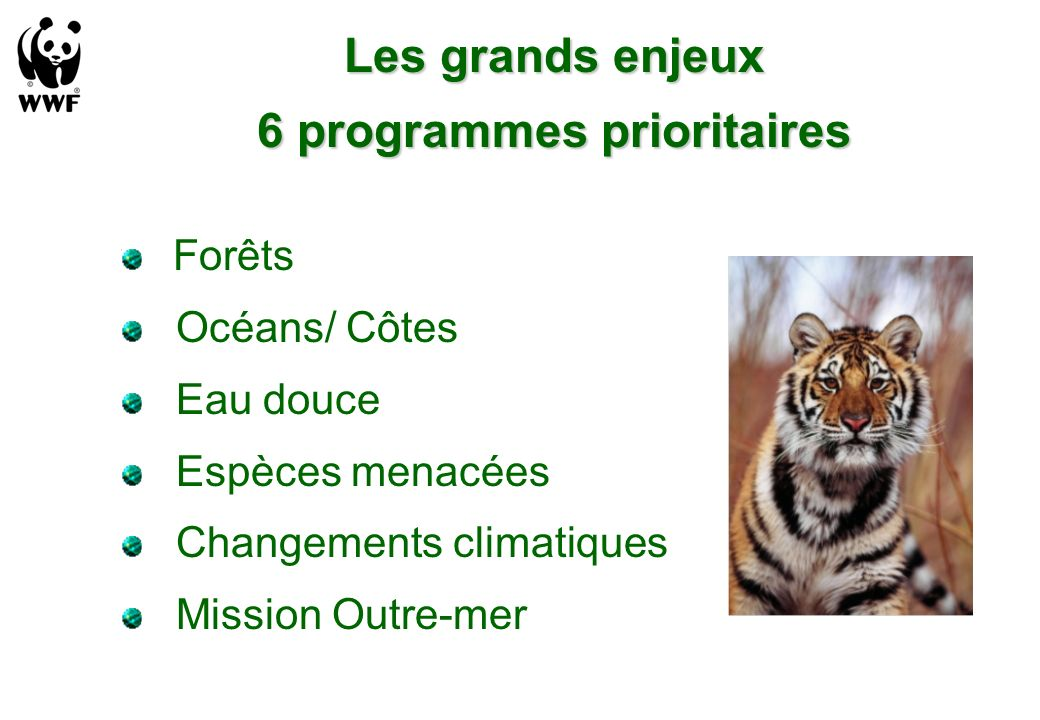 6 programmes prioritaires