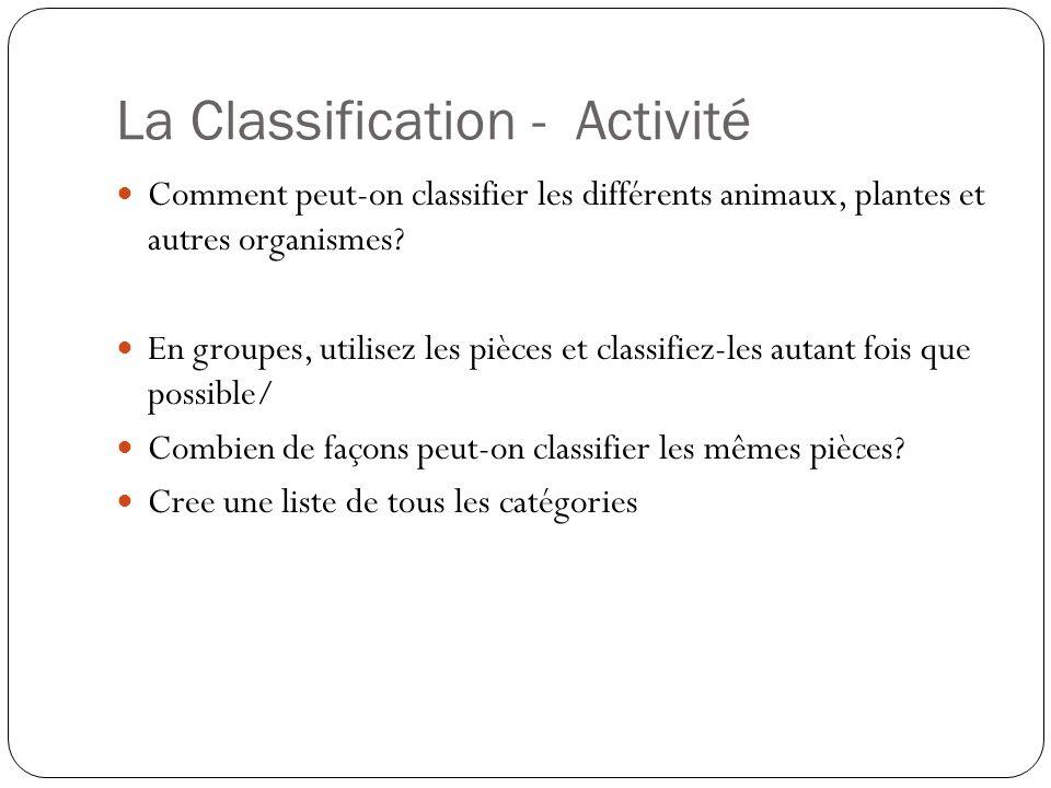 La Classification - Activité