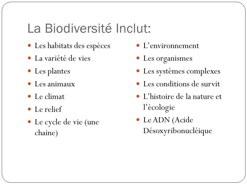 La Biodiversité Inclut: