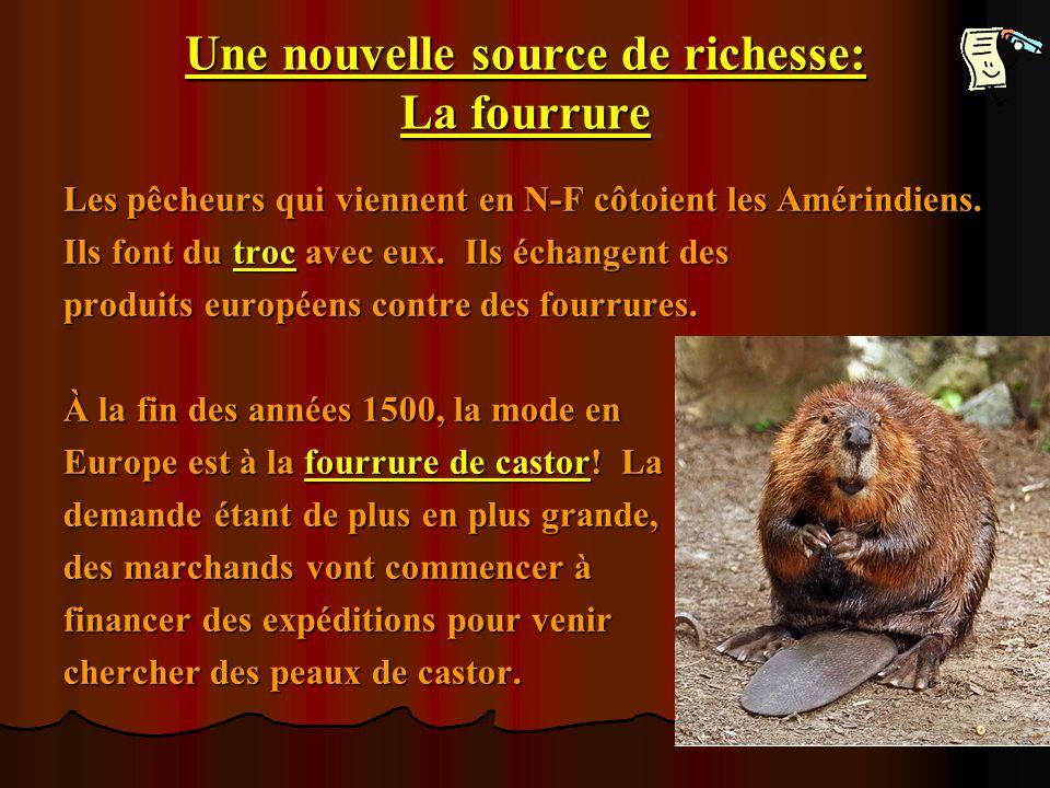 Une nouvelle source de richesse: La fourrure