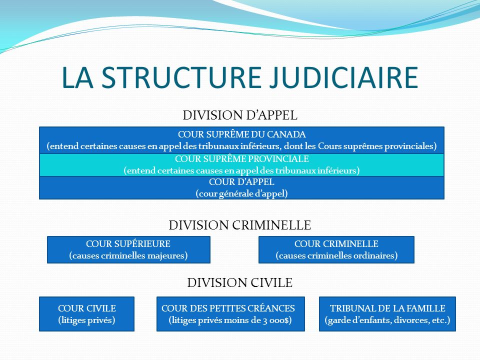 LA STRUCTURE JUDICIAIRE