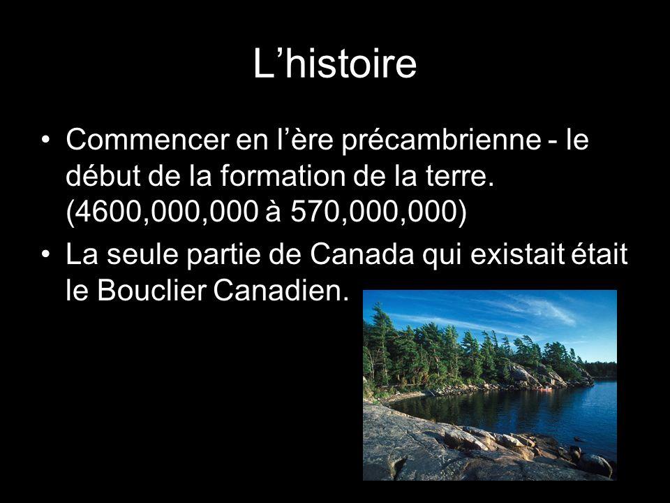 L'histoireCommencer en l'ère précambrienne - le début de la formation de la terre. (4600,000,000 à 570,000,000)