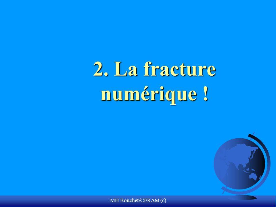 2. La fracture numérique ! MH Bouchet/CERAM (c)