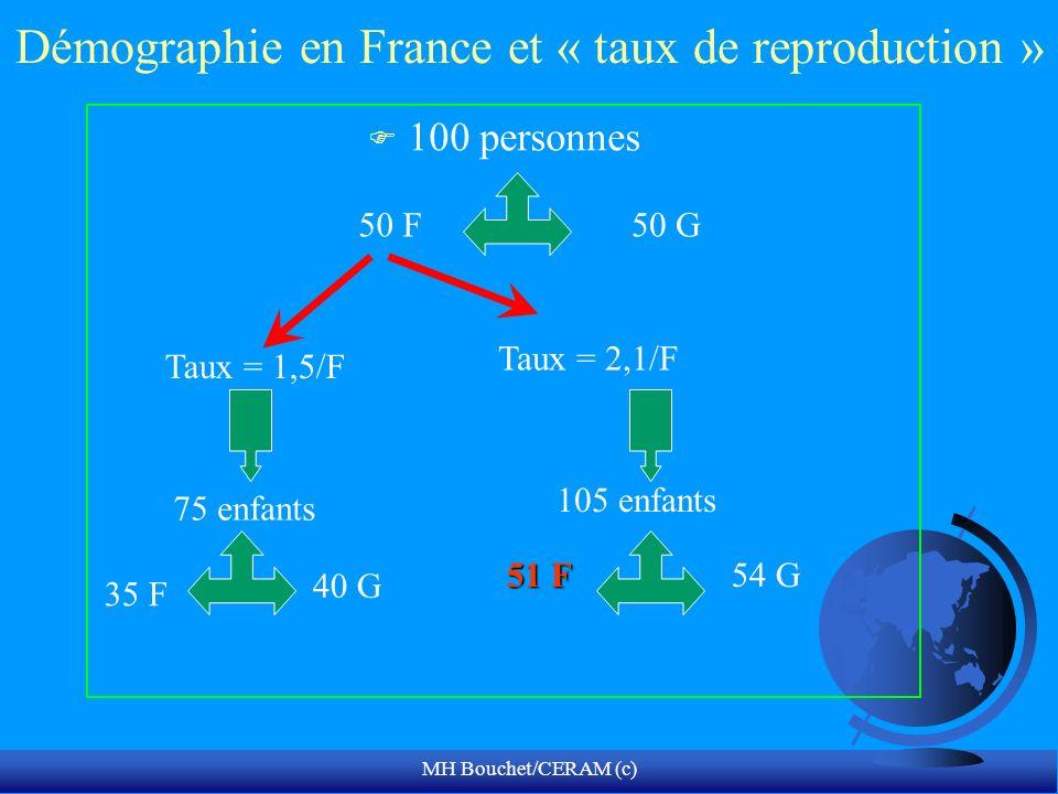 Démographie en France et « taux de reproduction »