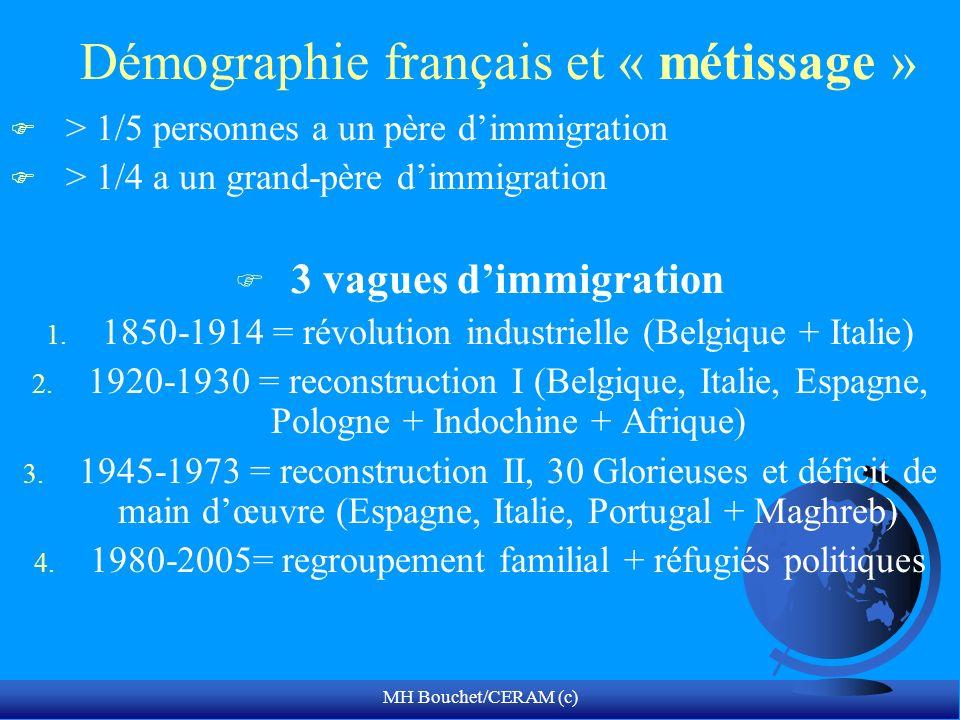 Démographie français et « métissage »