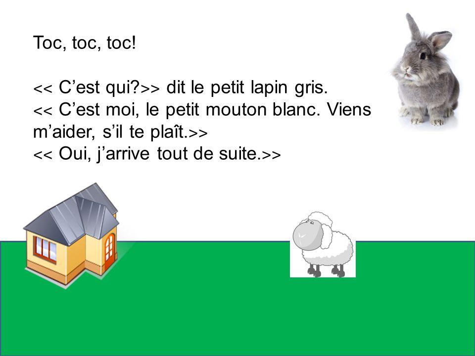 Toc, toc, toc! ˂˂ C'est qui ˃˃ dit le petit lapin gris. ˂˂ C'est moi, le petit mouton blanc. Viens m'aider, s'il te plaît.˃˃