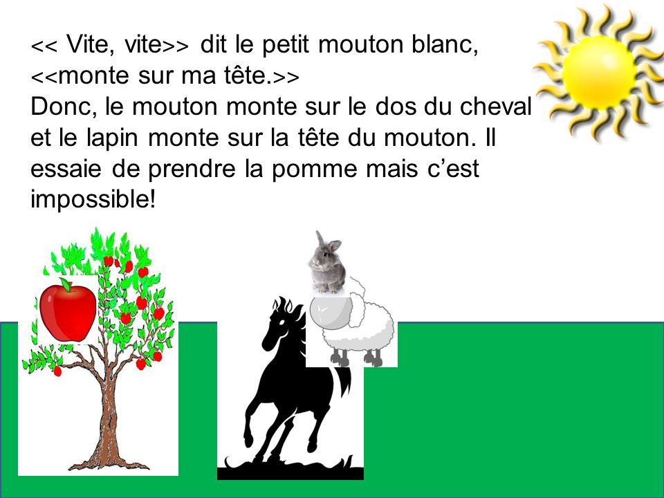 ˂˂ Vite, vite˃˃ dit le petit mouton blanc,