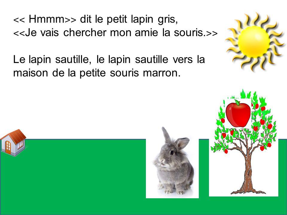 ˂˂ Hmmm˃˃ dit le petit lapin gris,