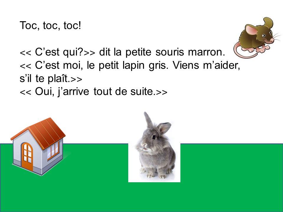 Toc, toc, toc! ˂˂ C'est qui ˃˃ dit la petite souris marron. ˂˂ C'est moi, le petit lapin gris. Viens m'aider, s'il te plaît.˃˃