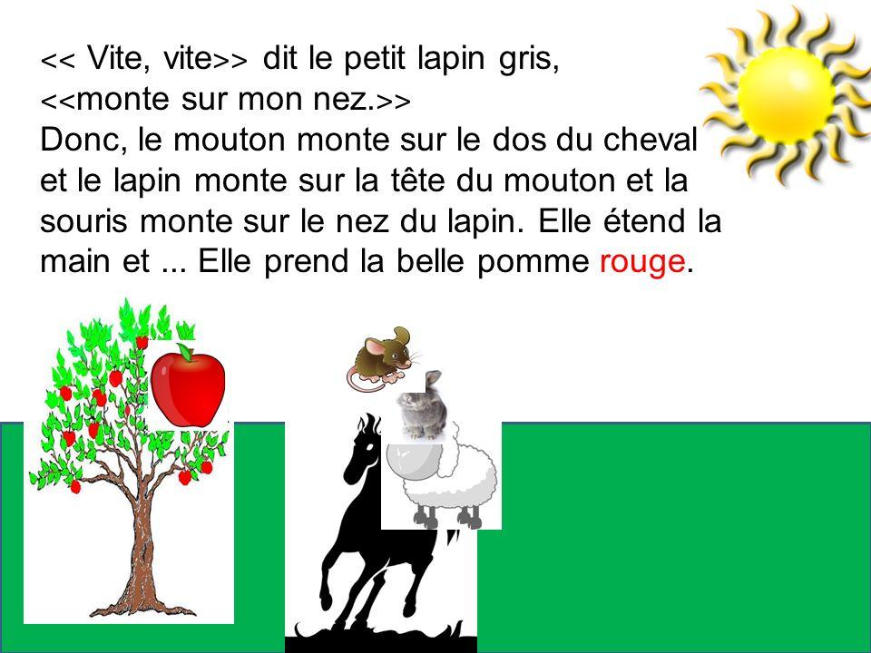 ˂˂ Vite, vite˃˃ dit le petit lapin gris,