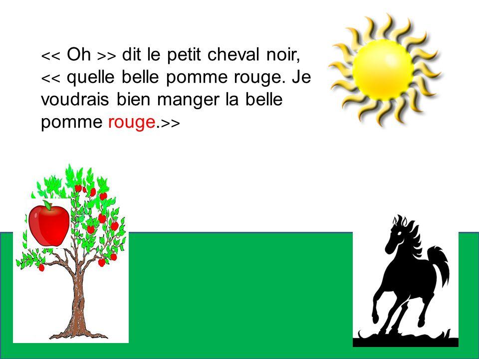 ˂˂ Oh ˃˃ dit le petit cheval noir,