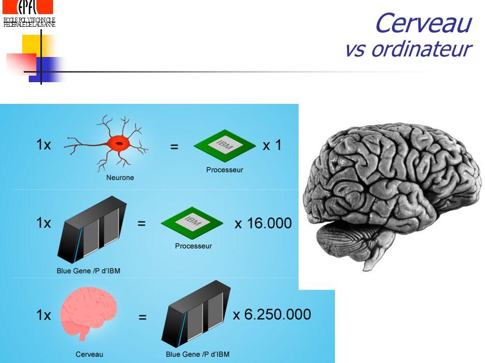 Cerveau vs ordinateur