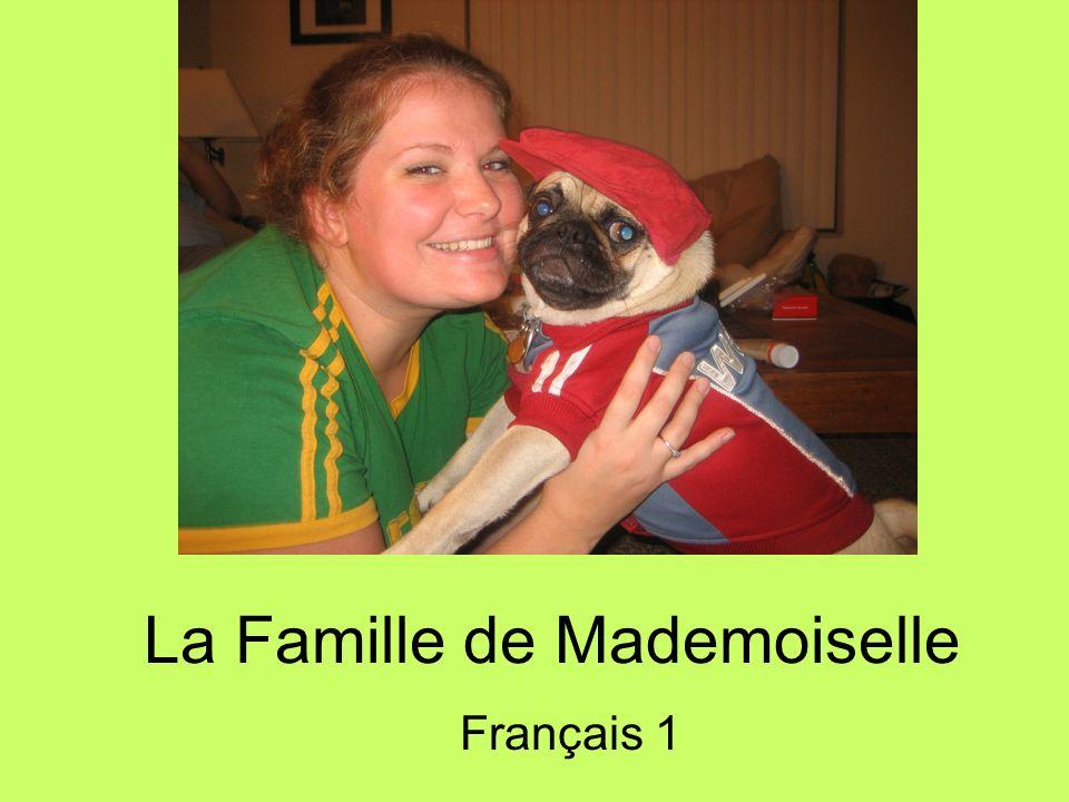 La Famille de Mademoiselle
