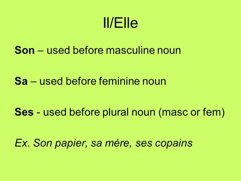 Il/Elle Son – used before masculine noun