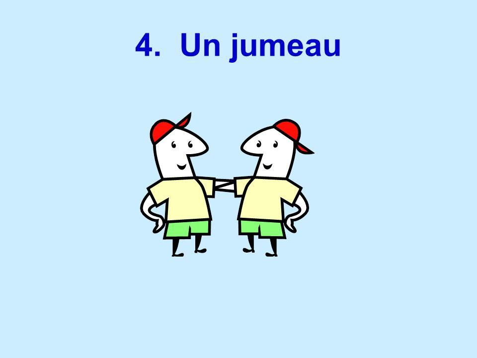 4. Un jumeau