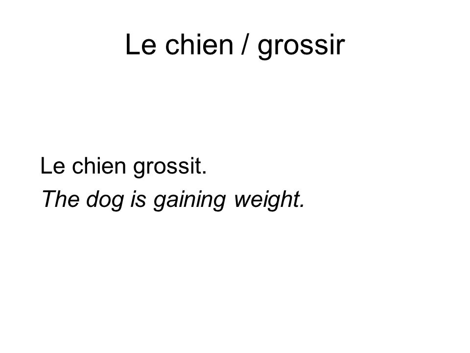 Le chien / grossir Le chien grossit. The dog is gaining weight.