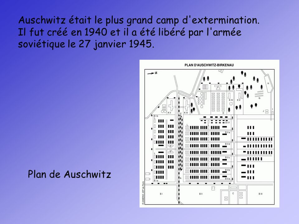 Auschwitz était le plus grand camp d extermination