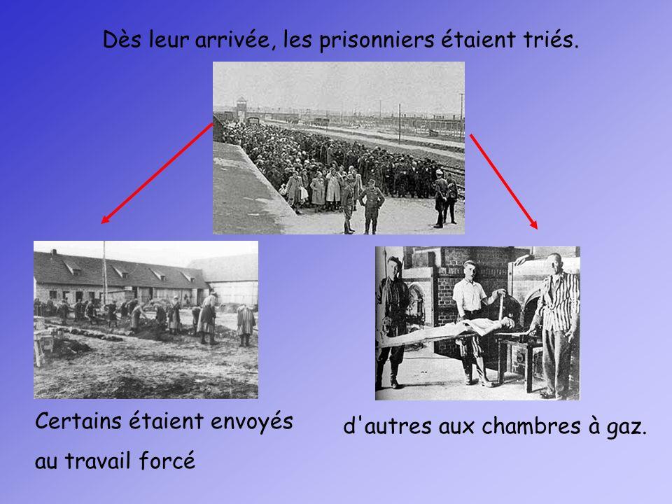 Dès leur arrivée, les prisonniers étaient triés.