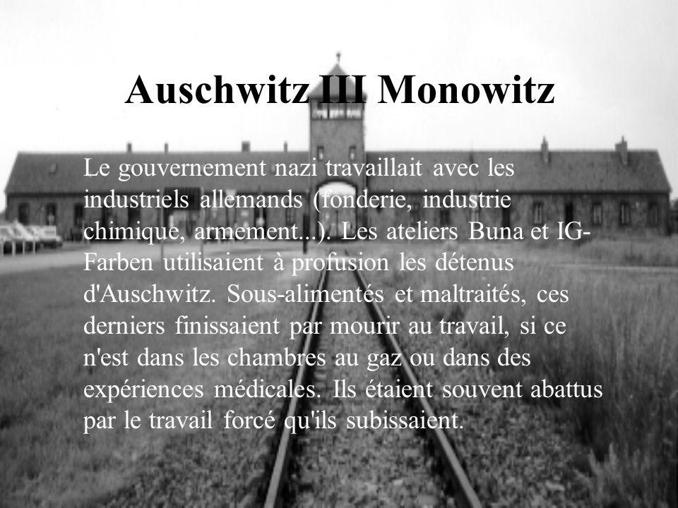 Auschwitz III Monowitz