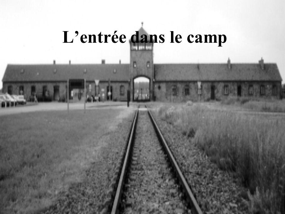 L'entrée dans le camp