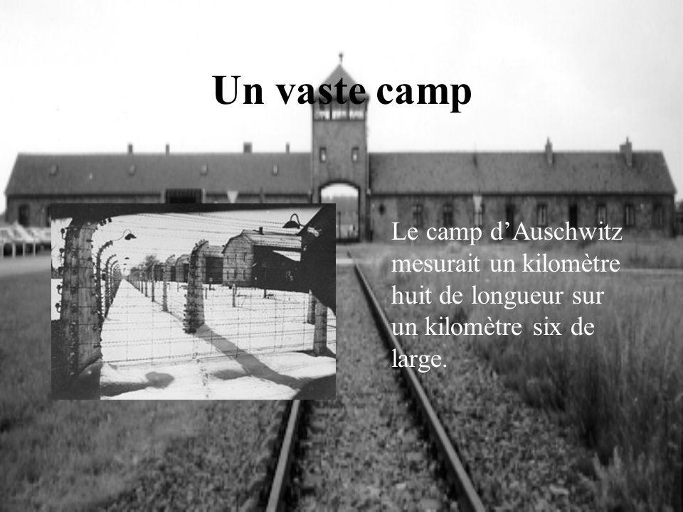 Un vaste camp Le camp d'Auschwitz mesurait un kilomètre huit de longueur sur un kilomètre six de large.
