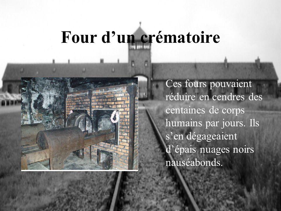 Four d'un crématoire