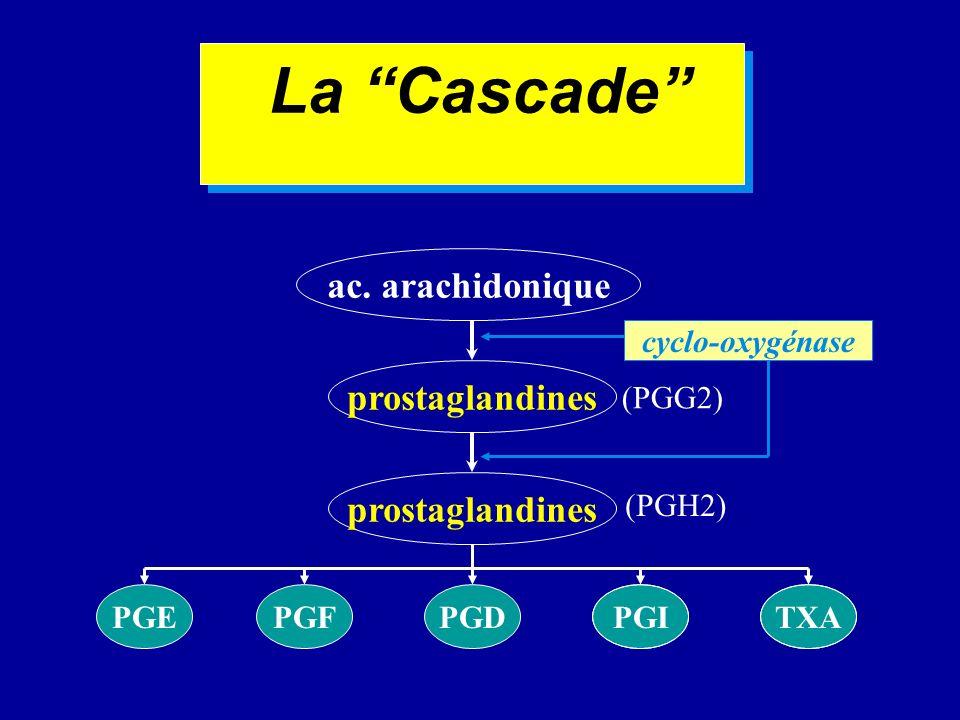 La Cascade ac. arachidonique prostaglandines prostaglandines