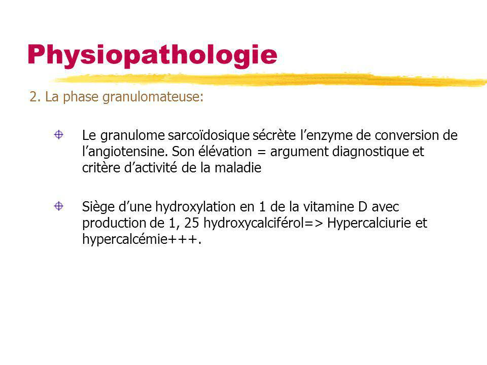 Physiopathologie 2. La phase granulomateuse: