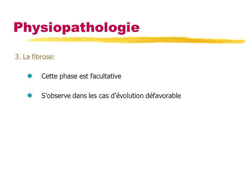 Physiopathologie 3. La fibrose: Cette phase est facultative